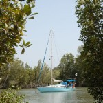 Flussfahrt - Auf in unbekannte Gewässer