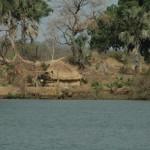 Palmhütte