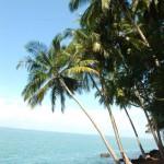 Isle de Salut