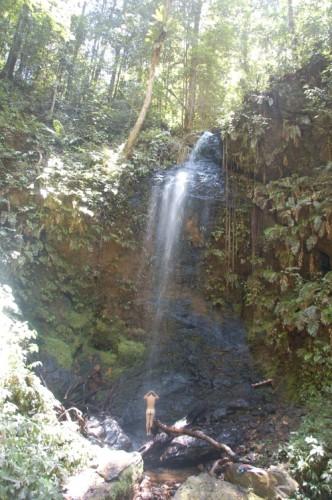 Dusche im Regenwald