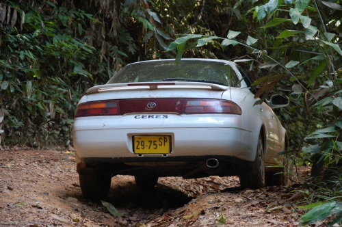 Geländegegängiger Sportwagen