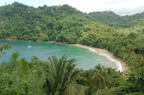 Einsame Bucht in Tobago