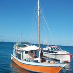 Fischer unter Segeln Cariacu Grenada