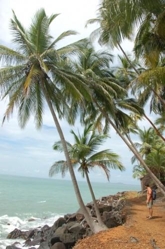 Franz Guayana Isle de Salut