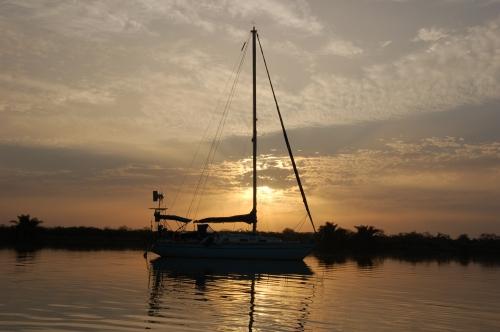 Gambia Admetus