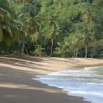 Tobago Strand Englishmans bay