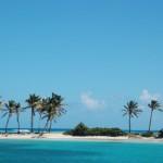 Palmenstrände