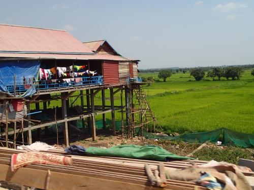 37_cambodian landscape_2
